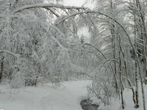 Очистка кровли от снега и наледи цена в москве